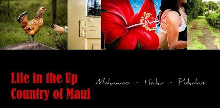 Up Country Maui_Cover
